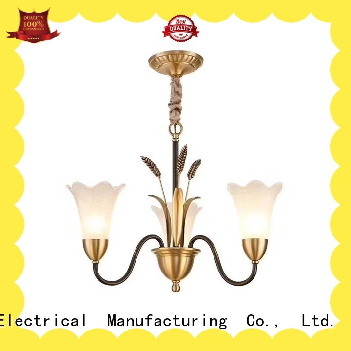 gorgeous ceiling lights sale light development for garden