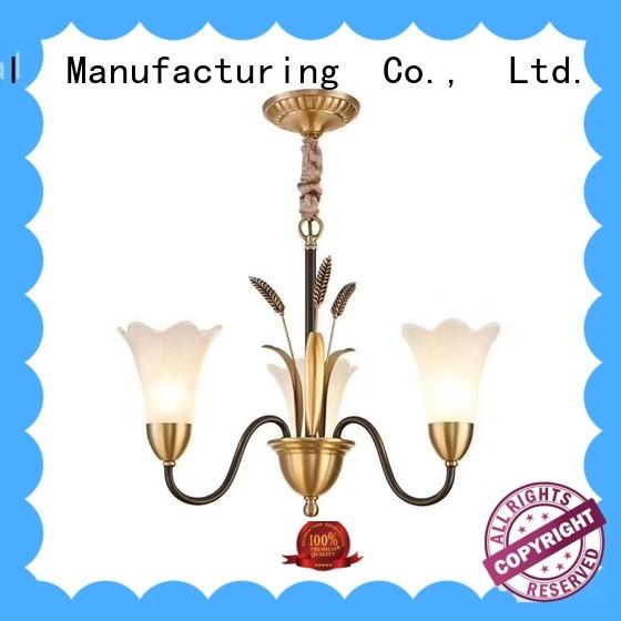 Longjian superb ceiling lights sale China for garden